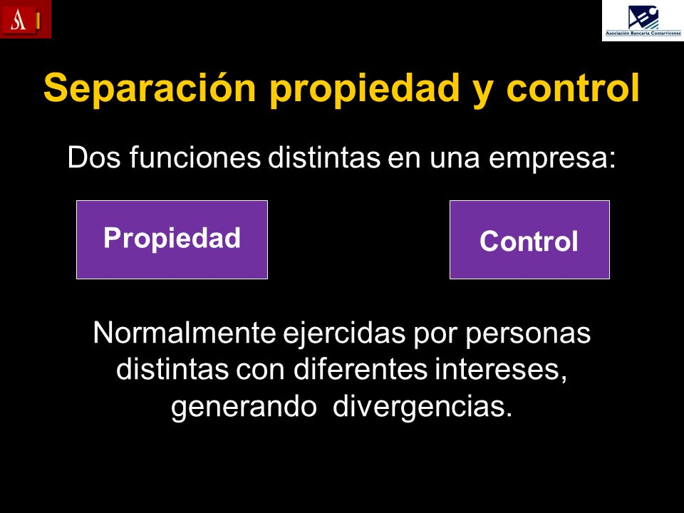 Separación propiedad y control
