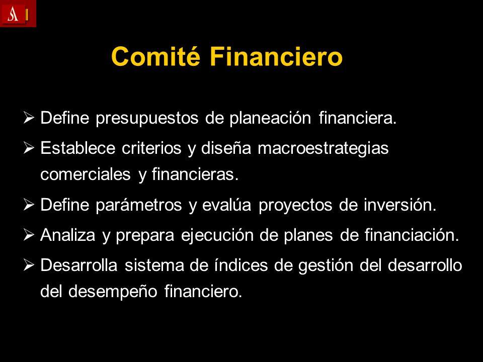 Comité Financiero Define presupuestos de planeación financiera.