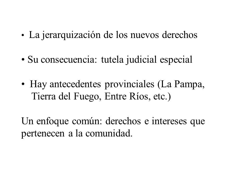 Su consecuencia: tutela judicial especial