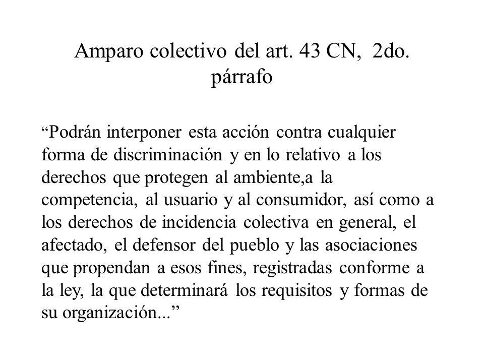Amparo colectivo del art. 43 CN, 2do. párrafo