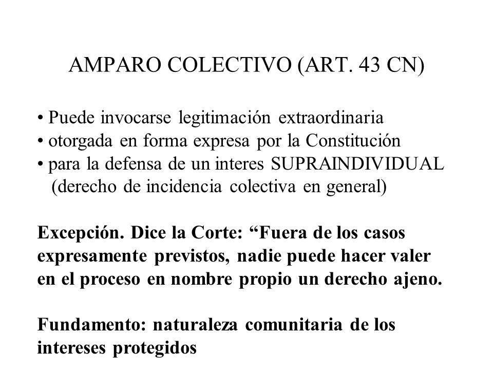 AMPARO COLECTIVO (ART. 43 CN)