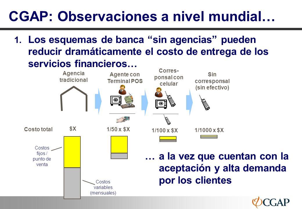 CGAP: Observaciones a nivel mundial…