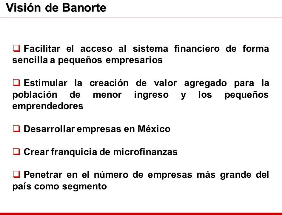 Visión de BanorteFacilitar el acceso al sistema financiero de forma sencilla a pequeños empresarios.
