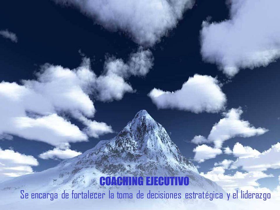 COACHING EJECUTIVO Se encarga de fortalecer la toma de decisiones estratégica y el liderazgo