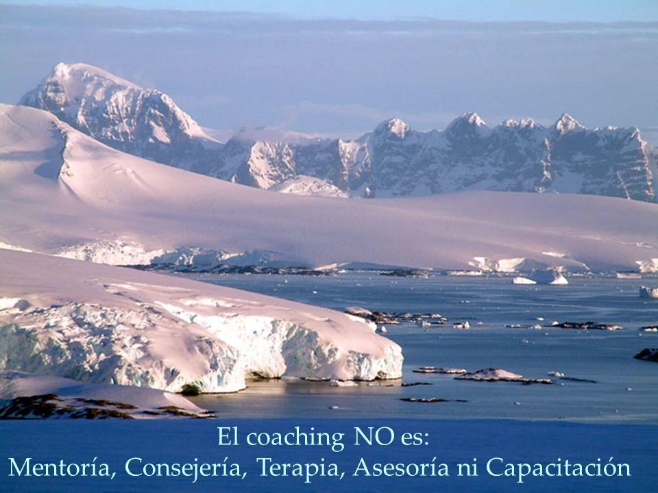 Mentoría, Consejería, Terapia, Asesoría ni Capacitación