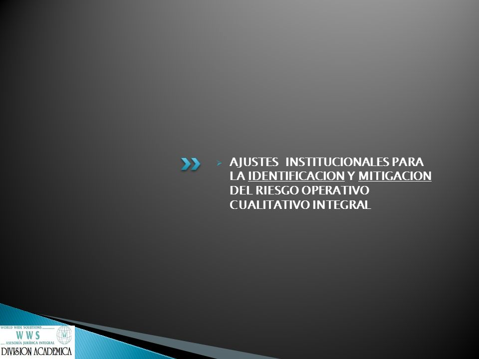 AJUSTES INSTITUCIONALES PARA LA IDENTIFICACION Y MITIGACION DEL RIESGO OPERATIVO CUALITATIVO INTEGRAL