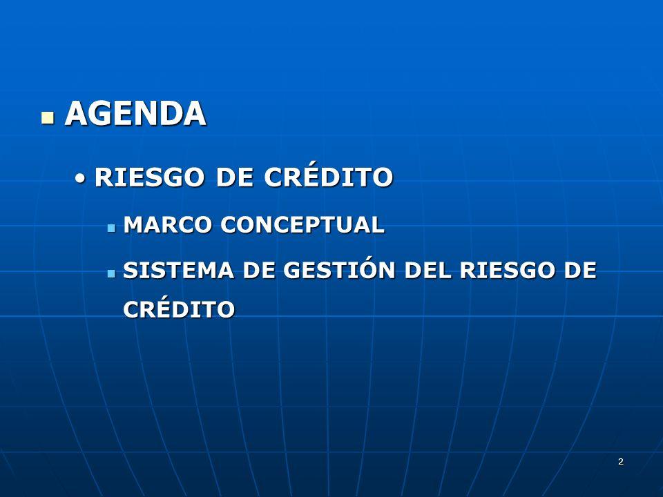 AGENDA RIESGO DE CRÉDITO MARCO CONCEPTUAL
