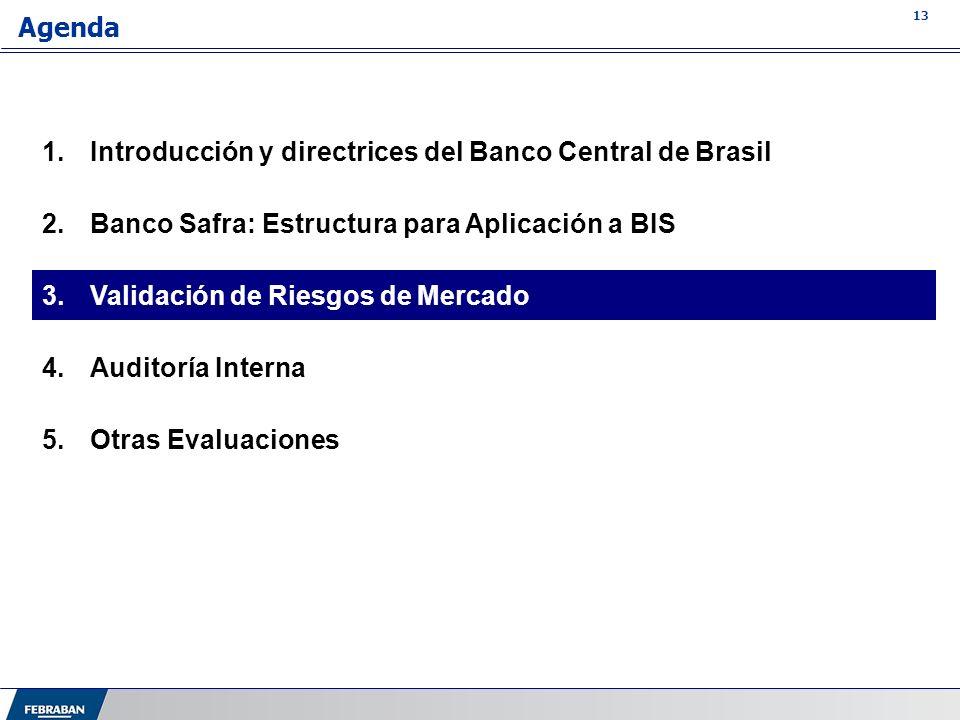 Introducción y directrices del Banco Central de Brasil