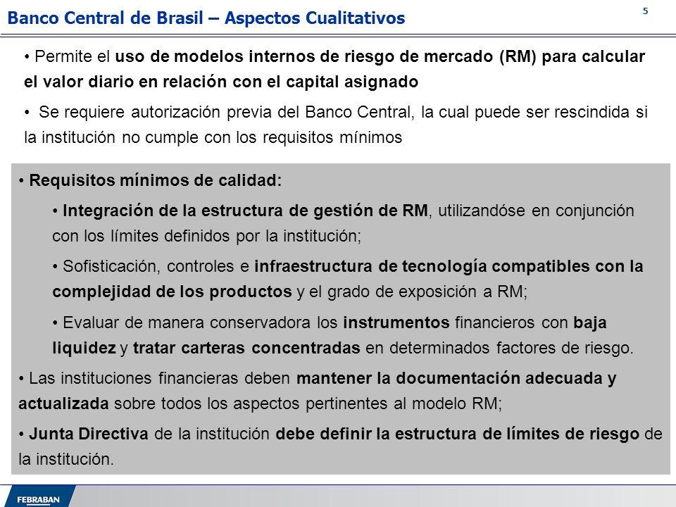 Banco Central de Brasil – Aspectos Cualitativos