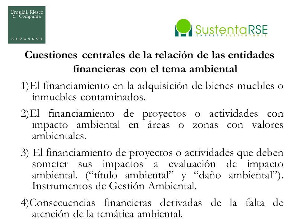 Cuestiones centrales de la relación de las entidades financieras con el tema ambiental