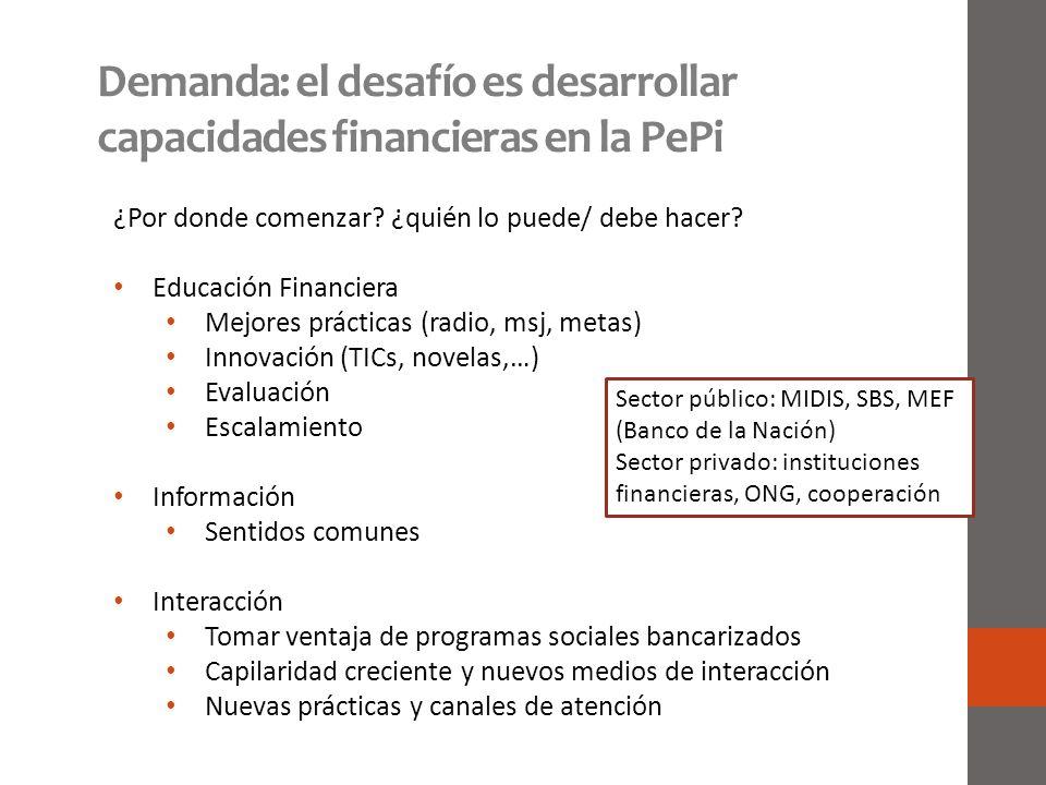 Demanda: el desafío es desarrollar capacidades financieras en la PePi