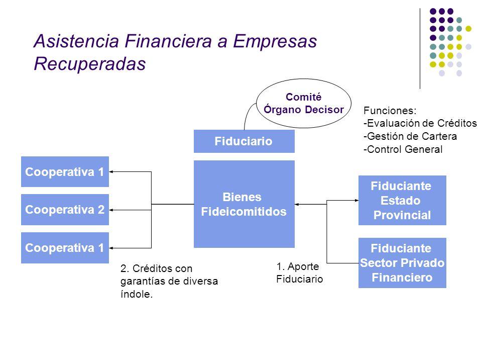 Asistencia Financiera a Empresas Recuperadas
