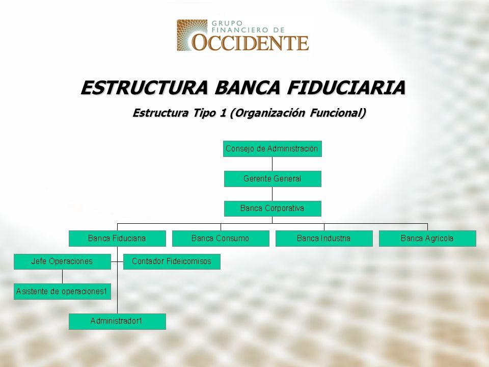 ESTRUCTURA BANCA FIDUCIARIA Estructura Tipo 1 (Organización Funcional)