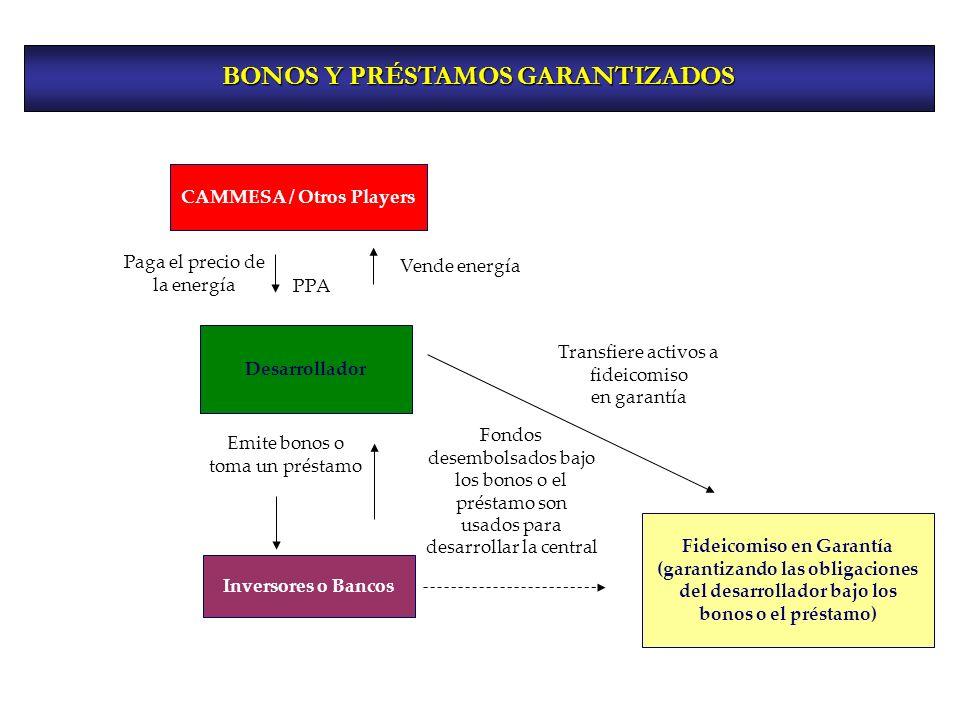 BONOS Y PRÉSTAMOS GARANTIZADOS CAMMESA / Otros Players