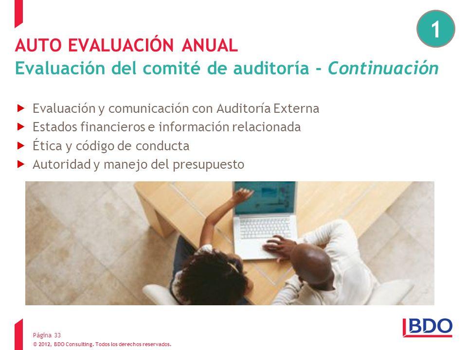 1 AUTO EVALUACIÓN ANUAL Evaluación del comité de auditoría - Continuación. Evaluación y comunicación con Auditoría Externa.