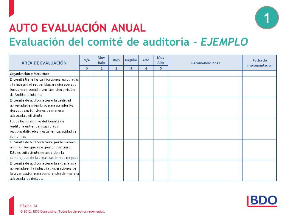 AUTO EVALUACIÓN ANUAL Evaluación del comité de auditoría - EJEMPLO