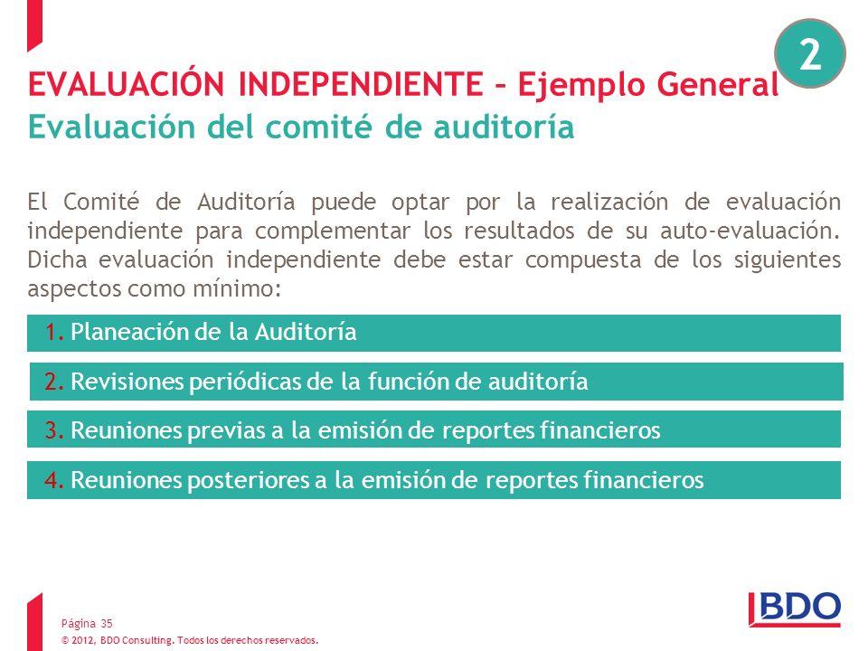 2EVALUACIÓN INDEPENDIENTE – Ejemplo General Evaluación del comité de auditoría.
