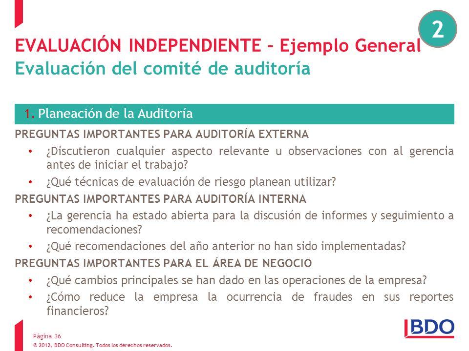 2EVALUACIÓN INDEPENDIENTE – Ejemplo General Evaluación del comité de auditoría. Planeación de la Auditoría.