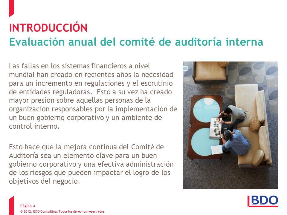 INTRODUCCIÓN Evaluación anual del comité de auditoría interna