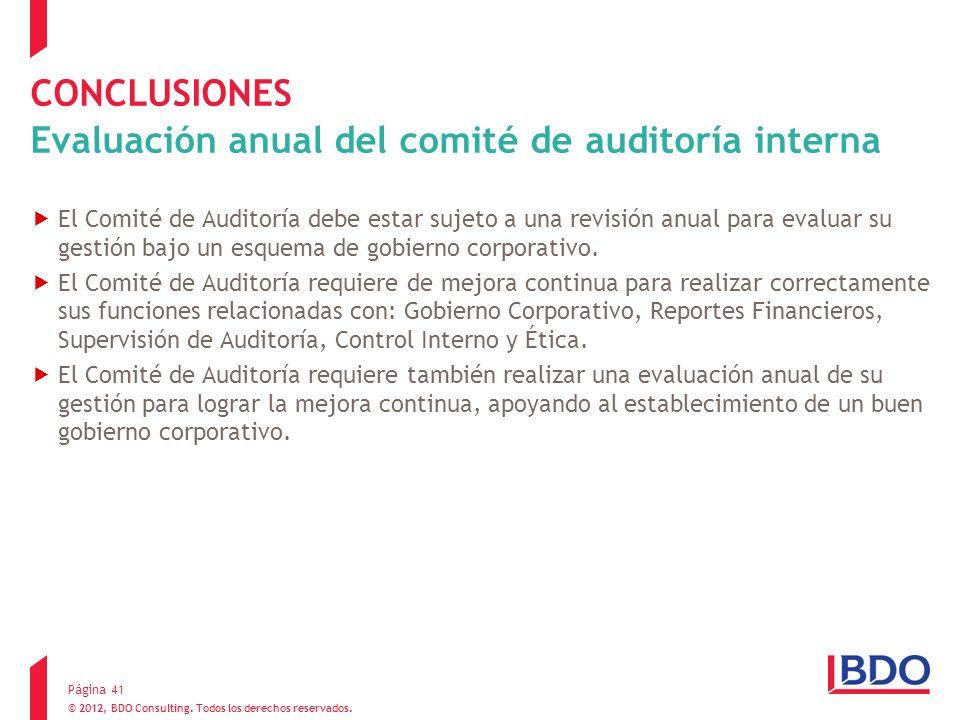 CONCLUSIONES Evaluación anual del comité de auditoría interna