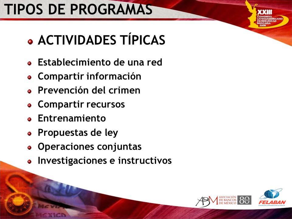 TIPOS DE PROGRAMAS ACTIVIDADES TÍPICAS Establecimiento de una red