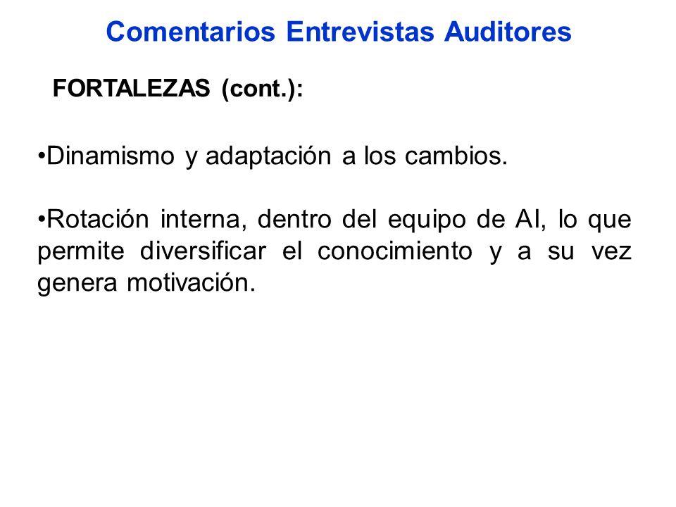 Comentarios Entrevistas Auditores