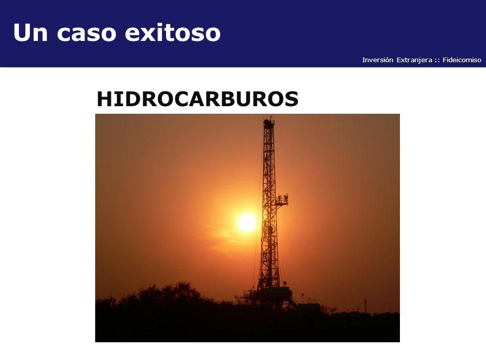 Un caso exitoso HIDROCARBUROS