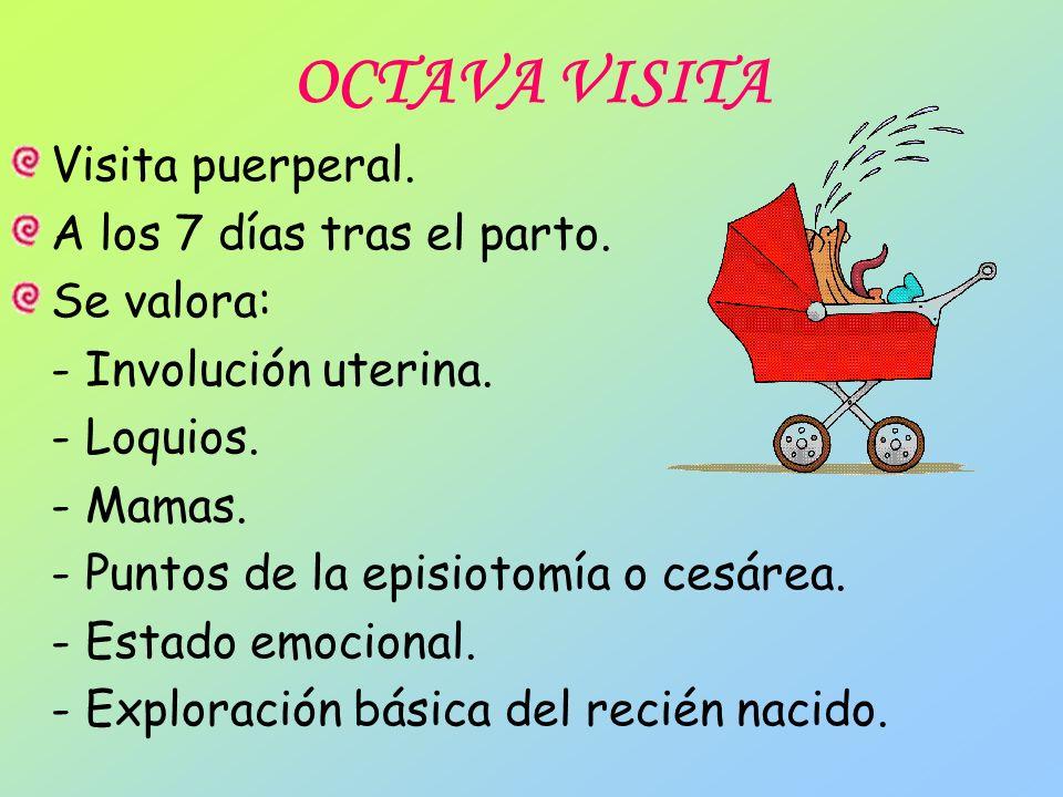 OCTAVA VISITA Visita puerperal. A los 7 días tras el parto. Se valora: