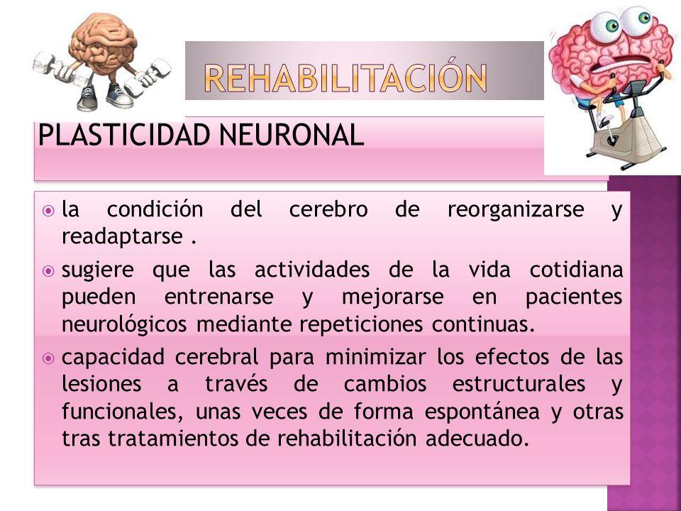 Rehabilitación PLASTICIDAD NEURONAL