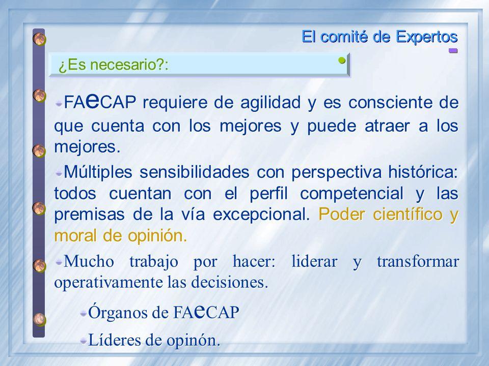 El comité de Expertos ¿Es necesario : FAeCAP requiere de agilidad y es consciente de que cuenta con los mejores y puede atraer a los mejores.