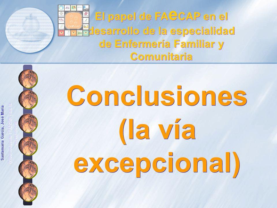 Conclusiones (la vía excepcional)