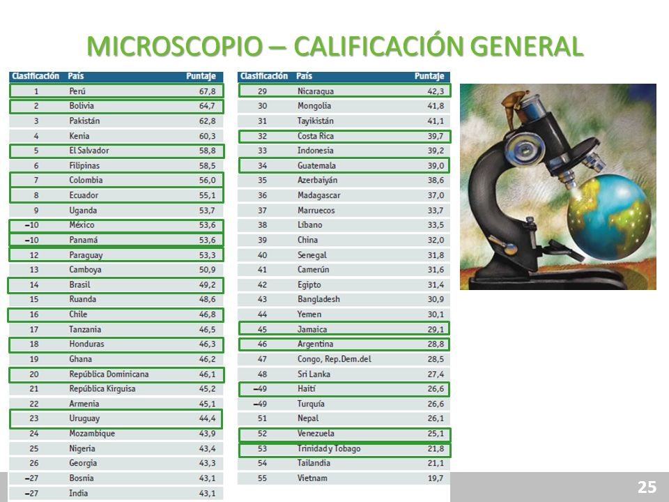 MICROSCOPIO – CALIFICACIÓN GENERAL