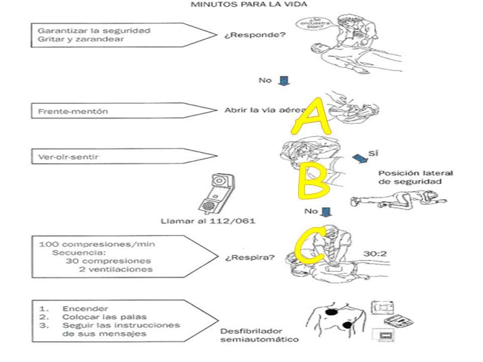 A B C Algoritmo de la RCP BÁSICA CON DESA del 2005