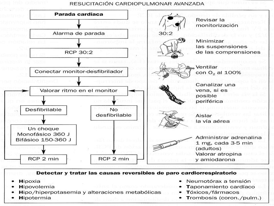 RITMO DESFIBRILABLE: FIBRILACIÓN VENTRICULAR Y TAQUICARDIA VENTRICULAR SIN PULSO