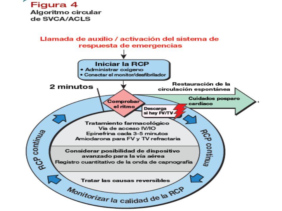 Este año se ha simplificado y racionalizado el algoritmo del soporte vital avanzado del paro cardiaco para destacar la importancia de la RCP de alta calidad, convirtiéndose en un algoritmo circular
