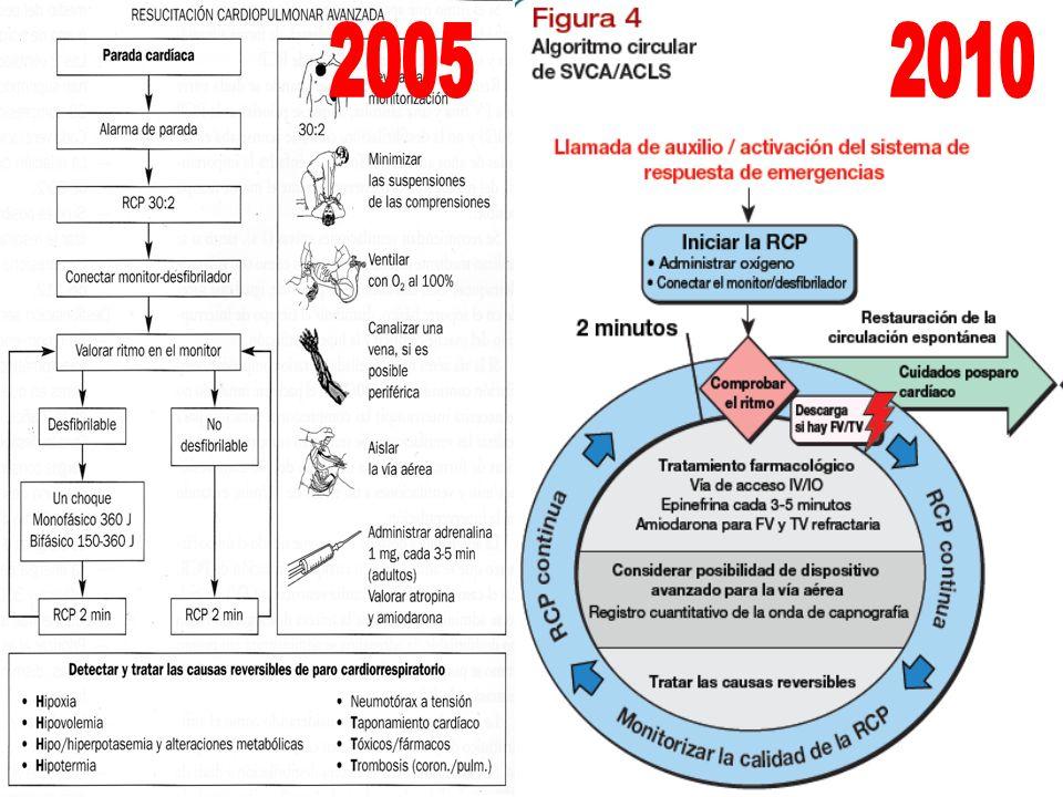 2005 2010 2005: DIAGRAMA DE FLUJO 2010: ALGORITMO CIRCULAR