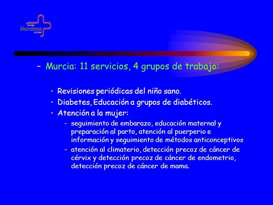 Murcia: 11 servicios, 4 grupos de trabajo: