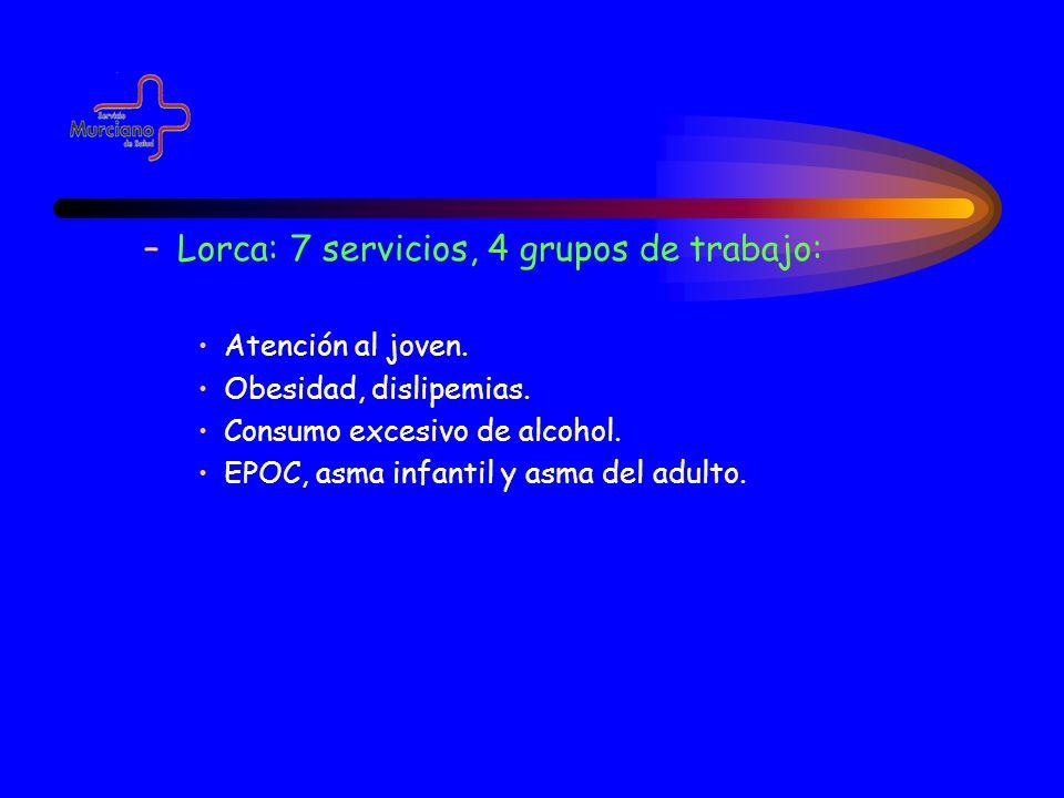 Lorca: 7 servicios, 4 grupos de trabajo:
