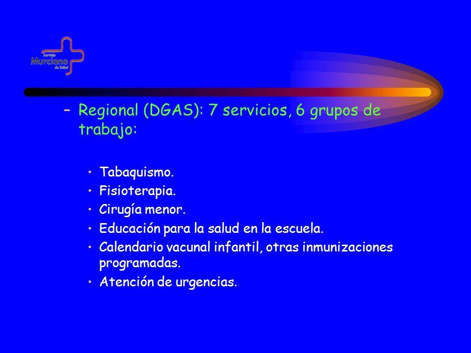 Regional (DGAS): 7 servicios, 6 grupos de trabajo: