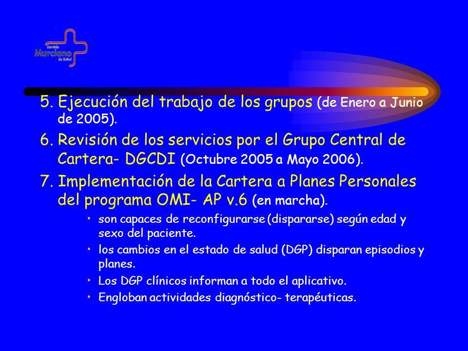 5. Ejecución del trabajo de los grupos (de Enero a Junio de 2005).
