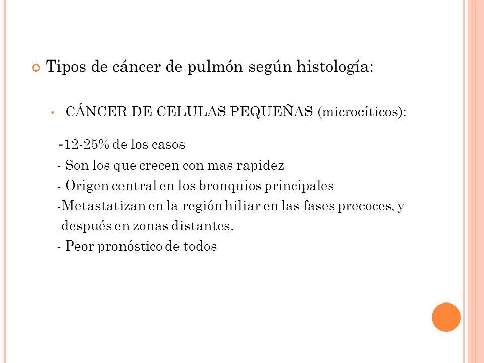 Tipos de cáncer de pulmón según histología: