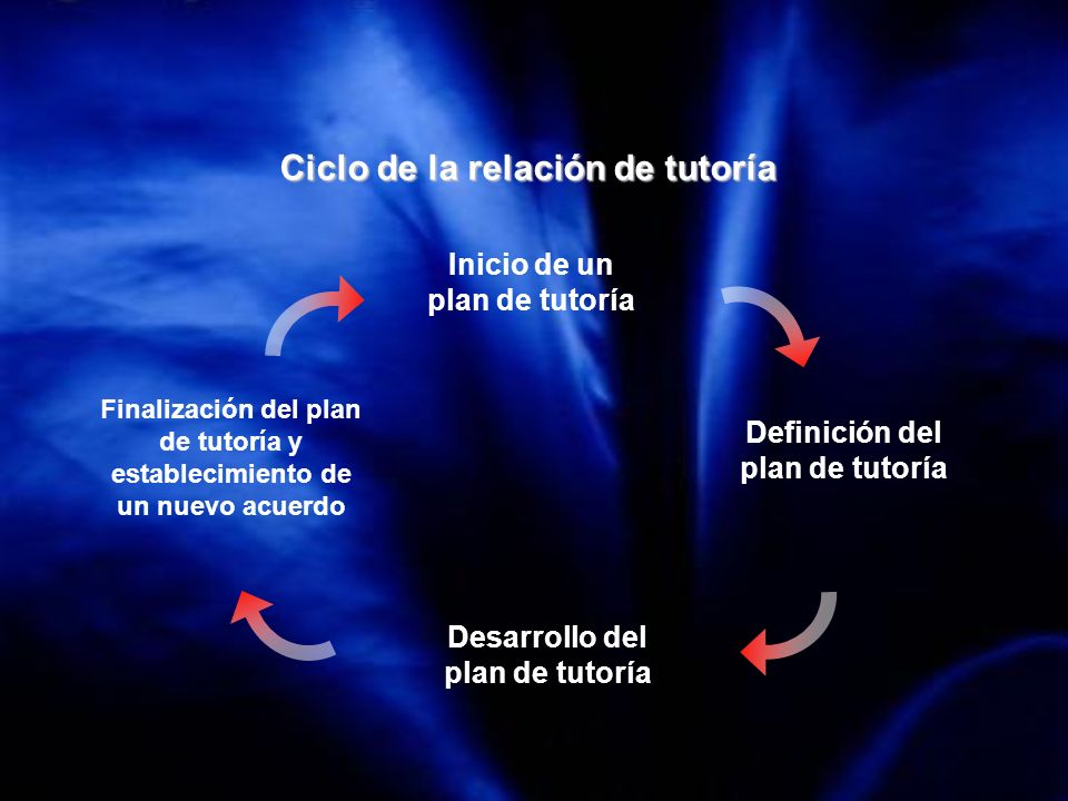 Ciclo de la relación de tutoría