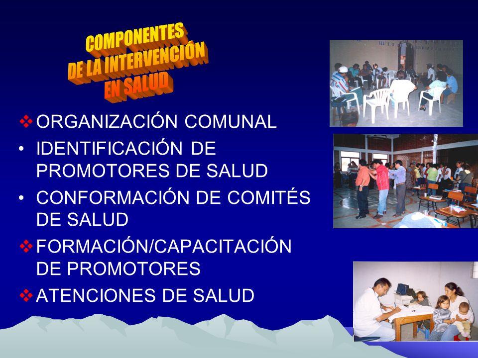 COMPONENTES DE LA INTERVENCIÓN. EN SALUD. ORGANIZACIÓN COMUNAL. IDENTIFICACIÓN DE PROMOTORES DE SALUD.
