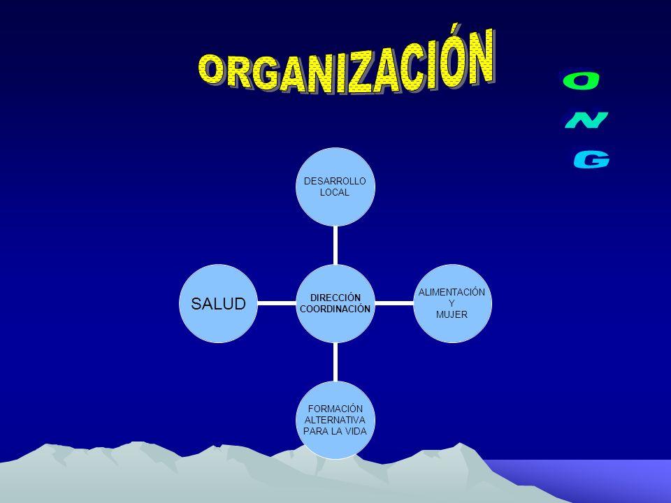 ORGANIZACIÓN ONG