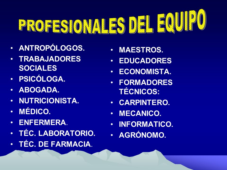 PROFESIONALES DEL EQUIPO