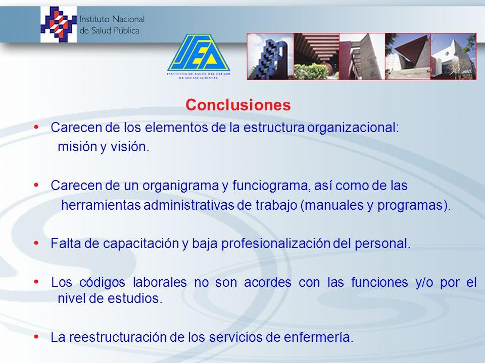 Conclusiones Carecen de los elementos de la estructura organizacional: