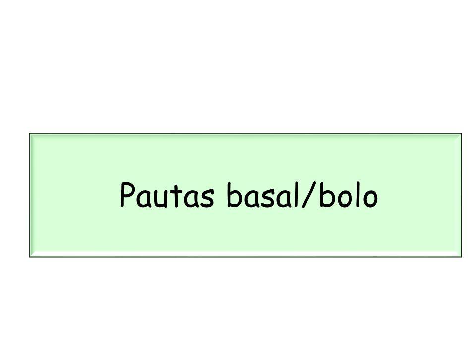 Pautas basal/bolo 19 19