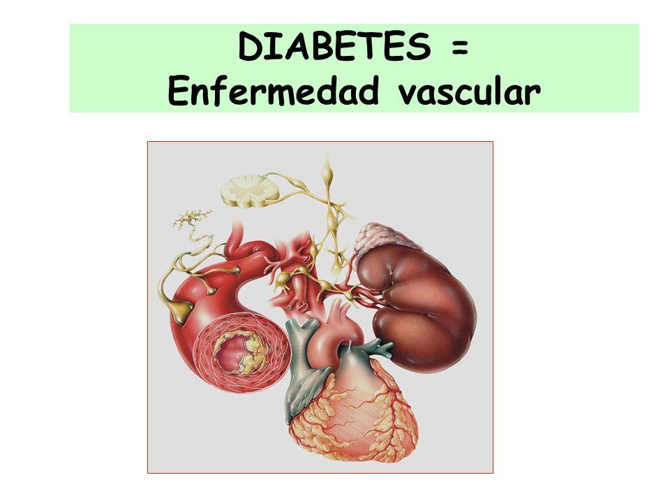 DIABETES = Enfermedad vascular