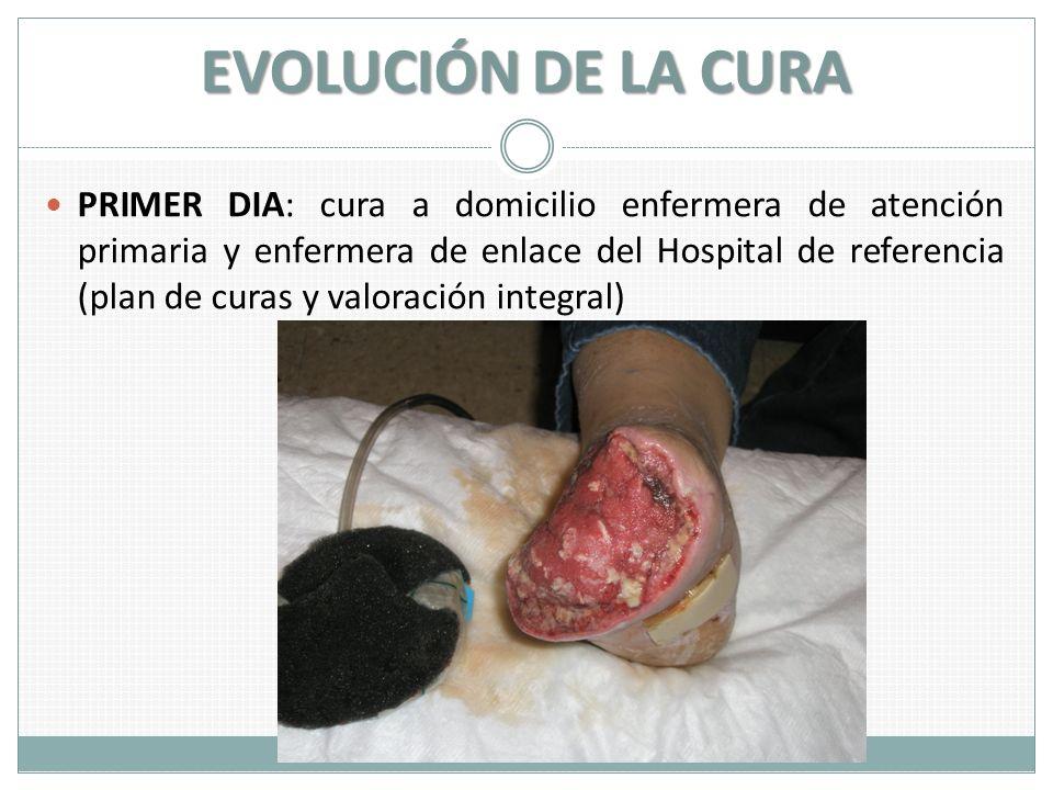 EVOLUCIÓN DE LA CURA