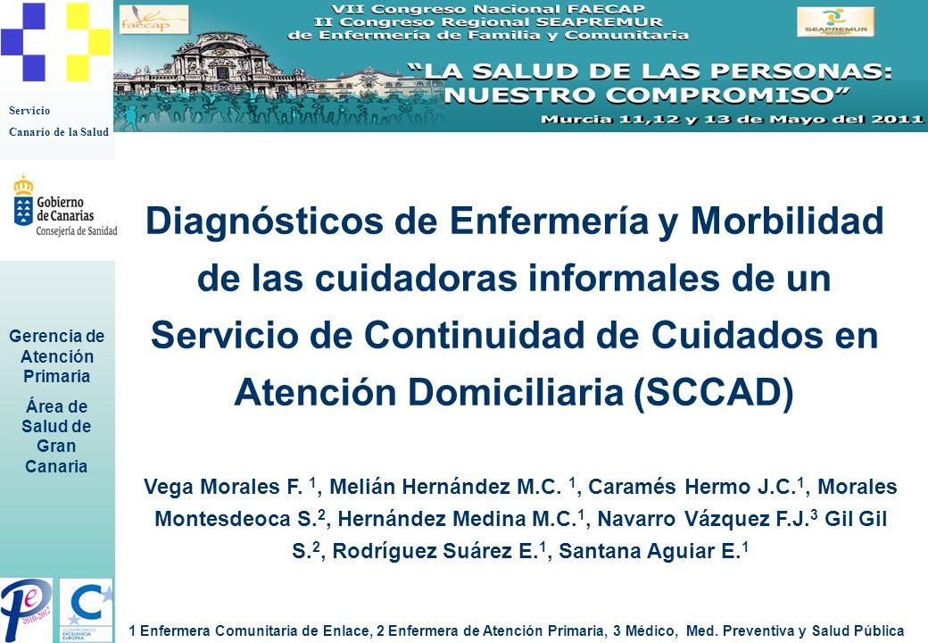 Diagnósticos de Enfermería y Morbilidad de las cuidadoras informales de un Servicio de Continuidad de Cuidados en Atención Domiciliaria (SCCAD)